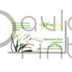 печать визитных карточек - typography-spb.ru